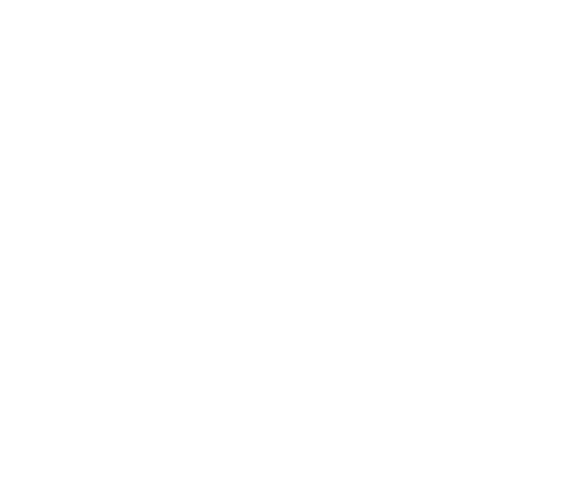 Draft Mission Beach